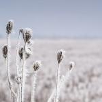 Pět zimních rad pro diabetiky: Na co si dát pozor a jak chránit inzulín před zamrznutím?